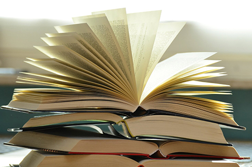 How to transition to industry as a PhD like a pro? Books dedicated to this topic